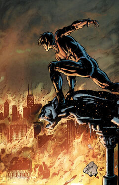 Nightwing Vol 3 24 Textless