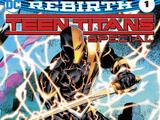 Teen Titans Anual: The Lazarus Contract Vol.1 1