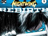 Nightwing (Volumen 4)