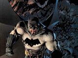 Bruce Wayne (Tierra 31)
