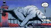 Wolf-Creach