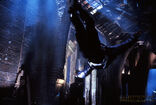 Batman 1989 (J. Sawyer) - Asian Joker Goon 4