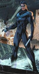 A nightwing hush image