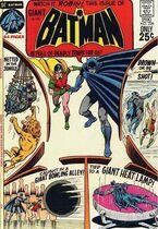 Batman228