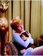 Pussycat 2