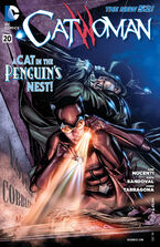 Catwoman Vol 4-20 Cover-1