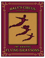 The flying graysons poster