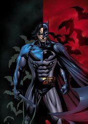 Nightwing-is-the-new-Batman-robin-dick-grayson-nightwing-9734316-600-849