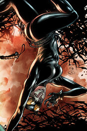 Catwoman-4