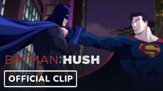 """Batman Hush - """"Batman vs. Superman"""""""