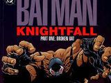 Knightfall - Der Sturz des Dunklen Ritters
