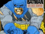 Batman: The Dark Knight Returns Vol.1 2