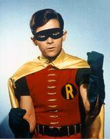 RobinFists