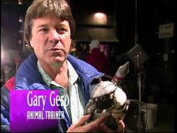 Gary Gero