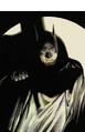 Alex Ross Batman.png