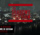 The Shadows of Gotham (TV Series)