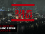 The Shadows of Gotham (TV Series)