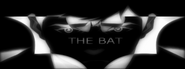Young Bruce Wayne - The Bat Poster