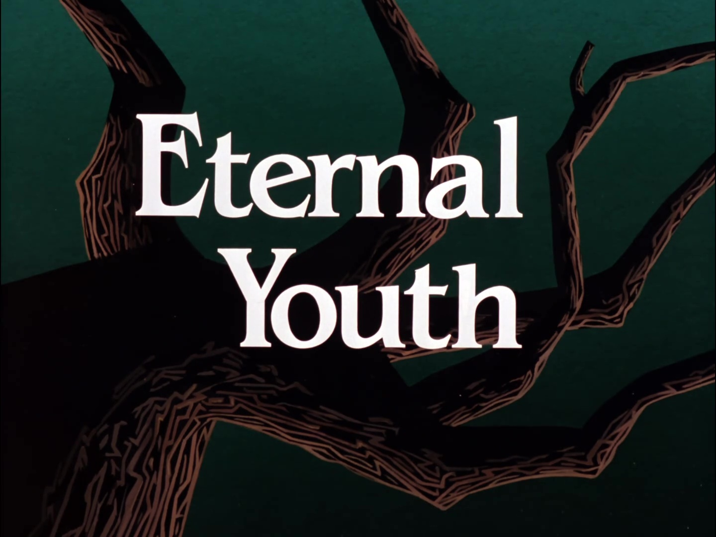 Image result for eternal youth title card
