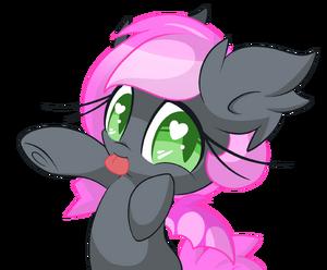 HeartBeat foal
