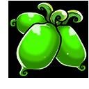 Green actinidia