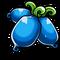 Blue actinidia
