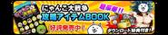 Bnr book01
