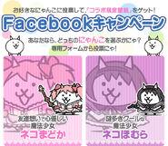Madoka magica FB campaign