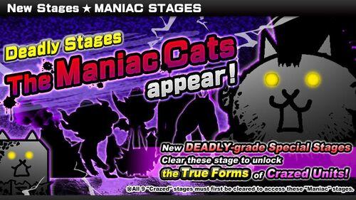 Maniac Cats