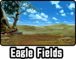 Eagle Fields