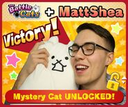 MattShea collab complete