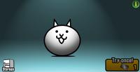 Normal cat capsule