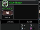 Guard Hauberk