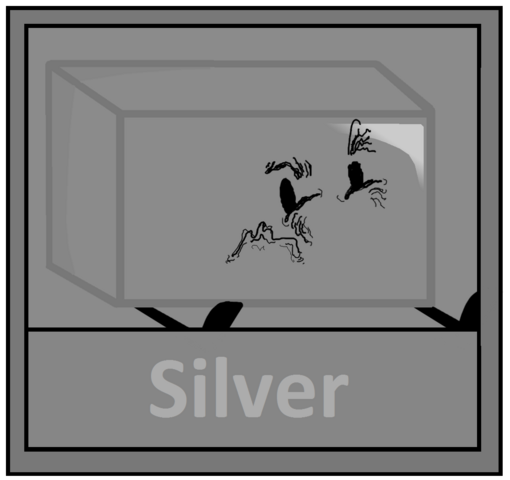 File:Silver Icon.png