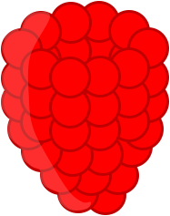 File:Raspberry2.png