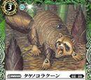 Takenoko Raccoon