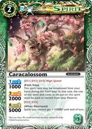 Caracalossom2