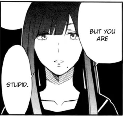 Kaito stupid