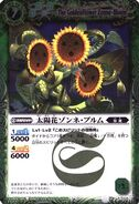 Zonne-bloem1