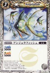 Angelafish1