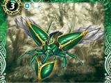 Shield Beetle