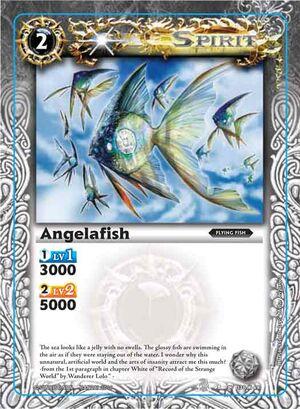 Angelafish2
