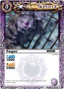 Foger2