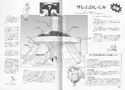 Tiphares - Its Morphology