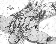 BAALO08 147 Morse's body