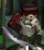 Blade Augment