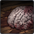 Inventory ghoul brain