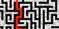 BFHL Maze Camo