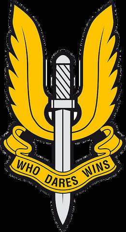 File:British SAS Insig.png