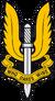 British SAS Insig